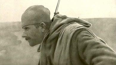 Photo of Око соколово Самсона Чернова
