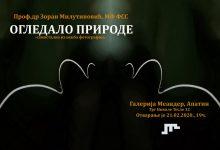 Photo of Зоран Милутиновић: ОГЛЕДАЛО ПРИРОДЕ