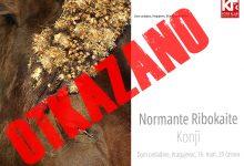 Photo of Normante Ribokaite: Konji